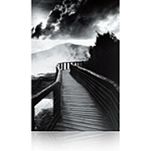 A3+ S045051 Epson Traditional Photo Paper - 25 Sheets